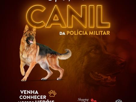 Apresentação do canil da Polícia Militar acontece neste fim de semana em shopping de Foz do Iguaçu