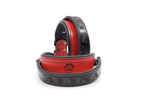 Training Collar Red & Black