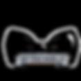 untouchable logo v2.png