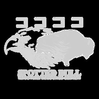 SBRRC_Logo3_edited.png