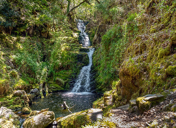 O'Sullivan's Cascade landscape