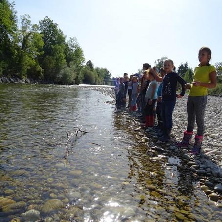 Klasse 3b: Exkursion an die Emme mit Pro Natura