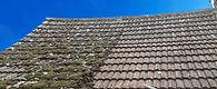 Roof-Cleaning-Services-Essex-Chelmsford_