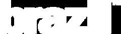 Brazil_Logo_White.png