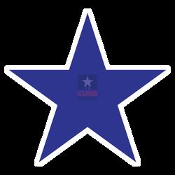 dkBlueStar