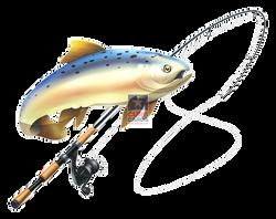 fishpole