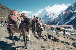 Travel Photography, Nepal