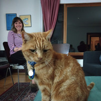 Mouse the cat (iREACH lab mascot)