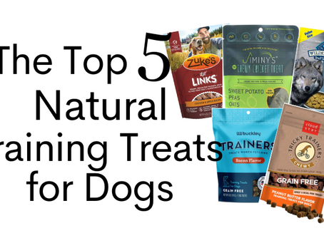 Top 5 Natural Treats for Training Dogs