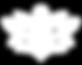 icone_SERVIZI-Training-Autogeno.png