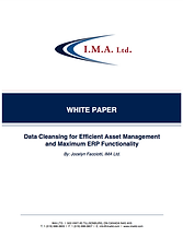 IMA Ltd. MRO Data Cleansing White Paper