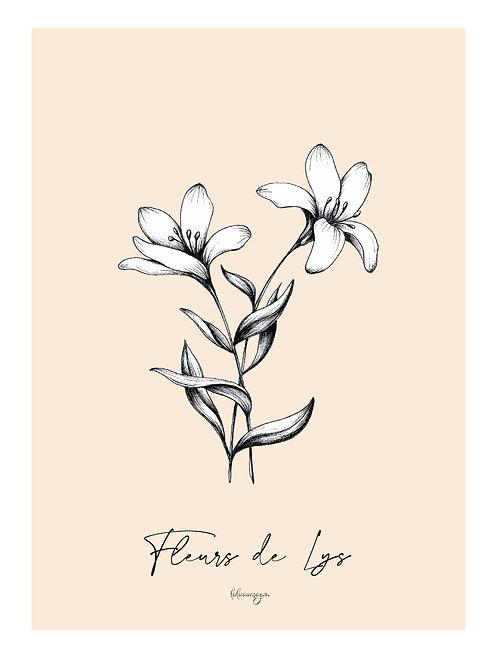 Affiche téléchargeable fleurs de Lys