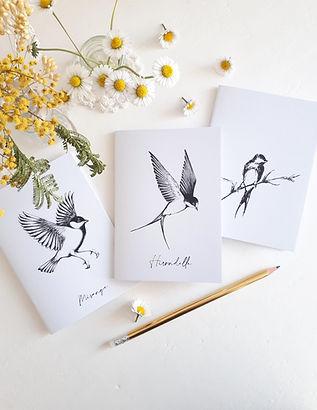carnets oiseaux.jpg