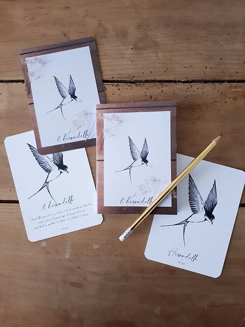 """Lot de 3 cartes et 1 carnet collection """"Hirondelle"""""""