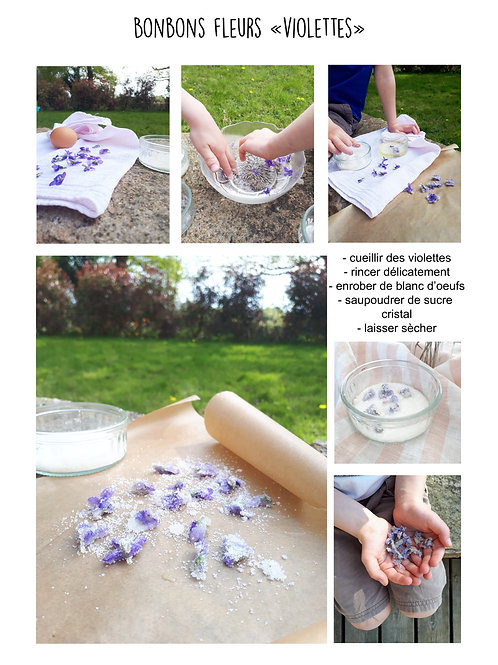 """Bonbons fleurs """"Violettes"""""""