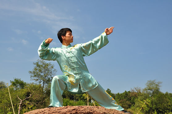 Master Can's Wushu images