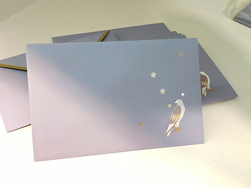 Gift envelopes (set of 6)-the mystic bird