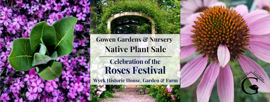 Native Plant Sale (2).png