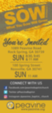 SOW SS_Digital Invite_iPhoneX_1125x2436_