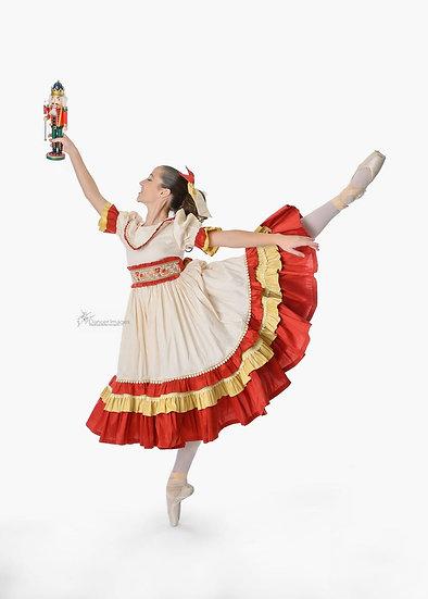 AvaClara Princess Girl Victorian Ballet Dress.