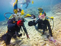 水納島ダイビングの様子