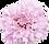 012stockphoto_TP_V_edited_edited.png