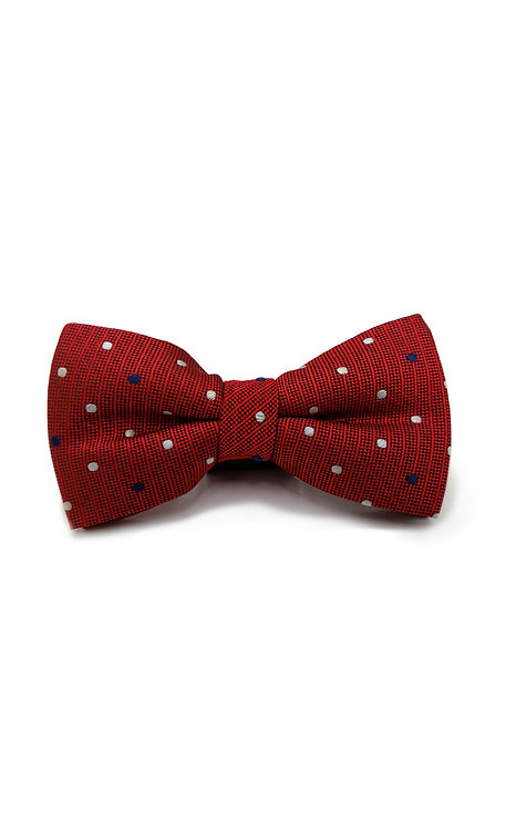STYLE NO BT04 BOYS RED DOT FASHION BOW TIE