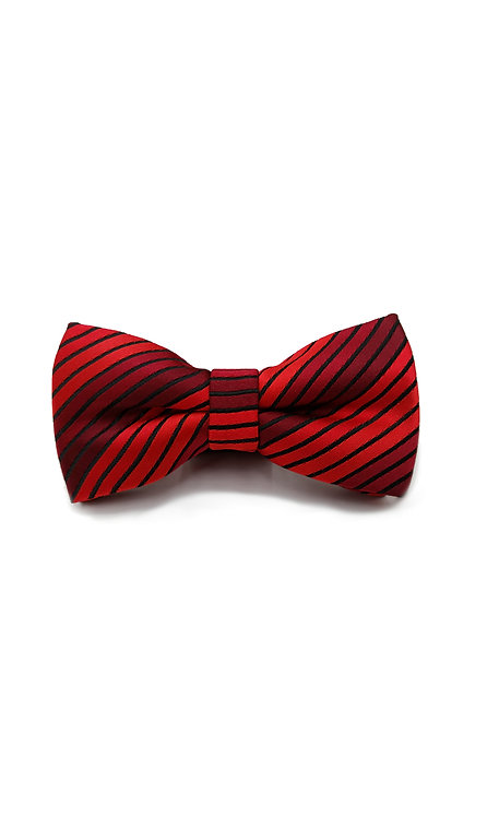 STYLE NO BT08 BOYS RED STRIPE FASHION BOW TIE