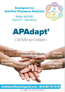 Mathieu Willemin - Flyer APAdapt'