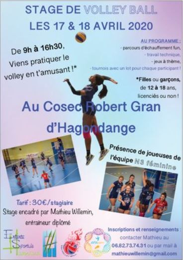 affiche mw stage volley.JPG