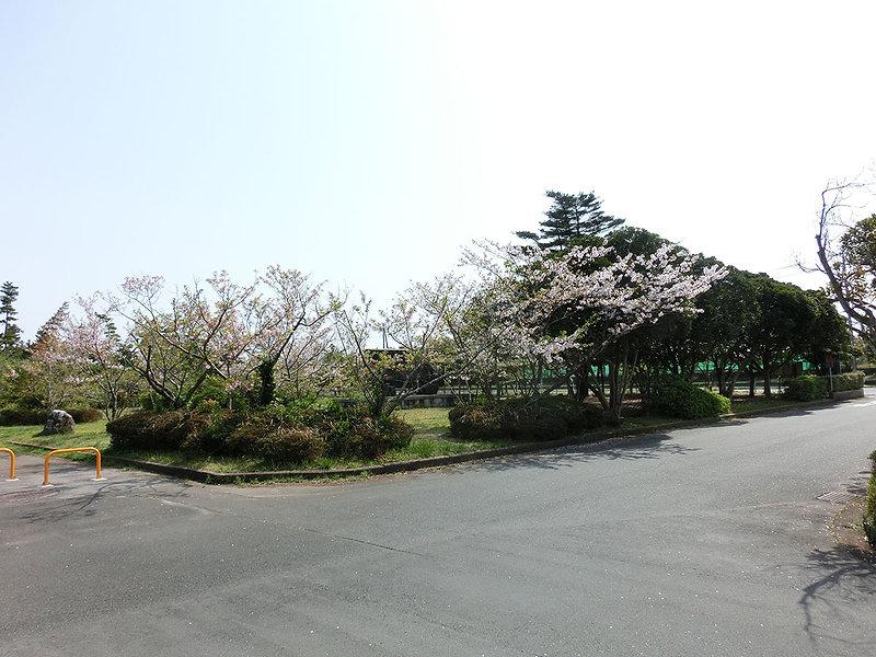 若松緑地0401_1.jpg