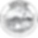 SPADE Logo_edited.png