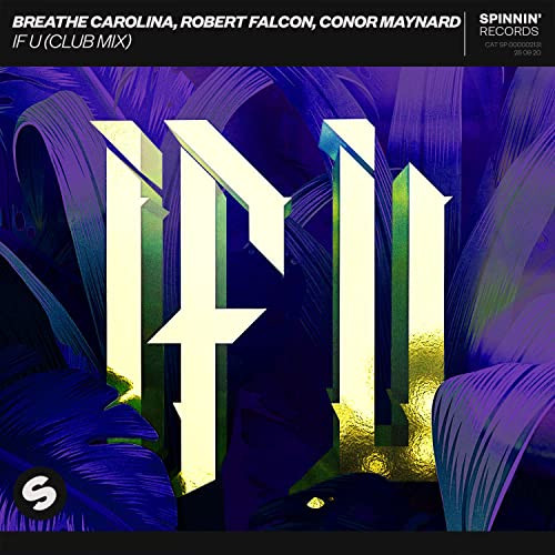 Robert Falcon - If U (Clubmix)
