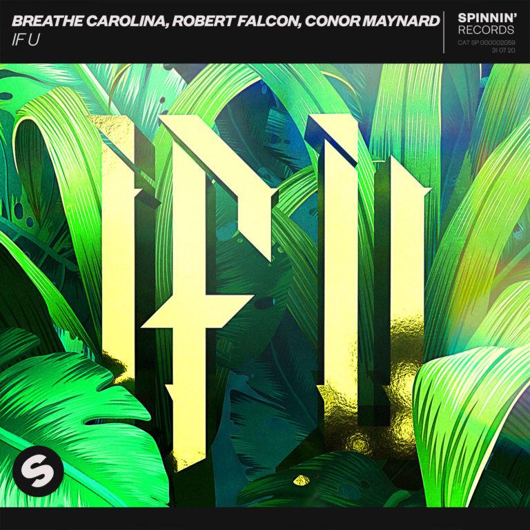 Robert Falcon - If U