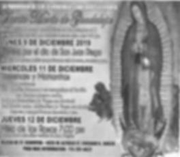 Virgen de Guadalupe Parish Celebrations.