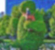 Osos coca cola parque araucano
