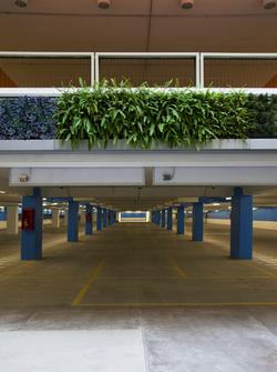 Estacionamiento Distrito de Lujo