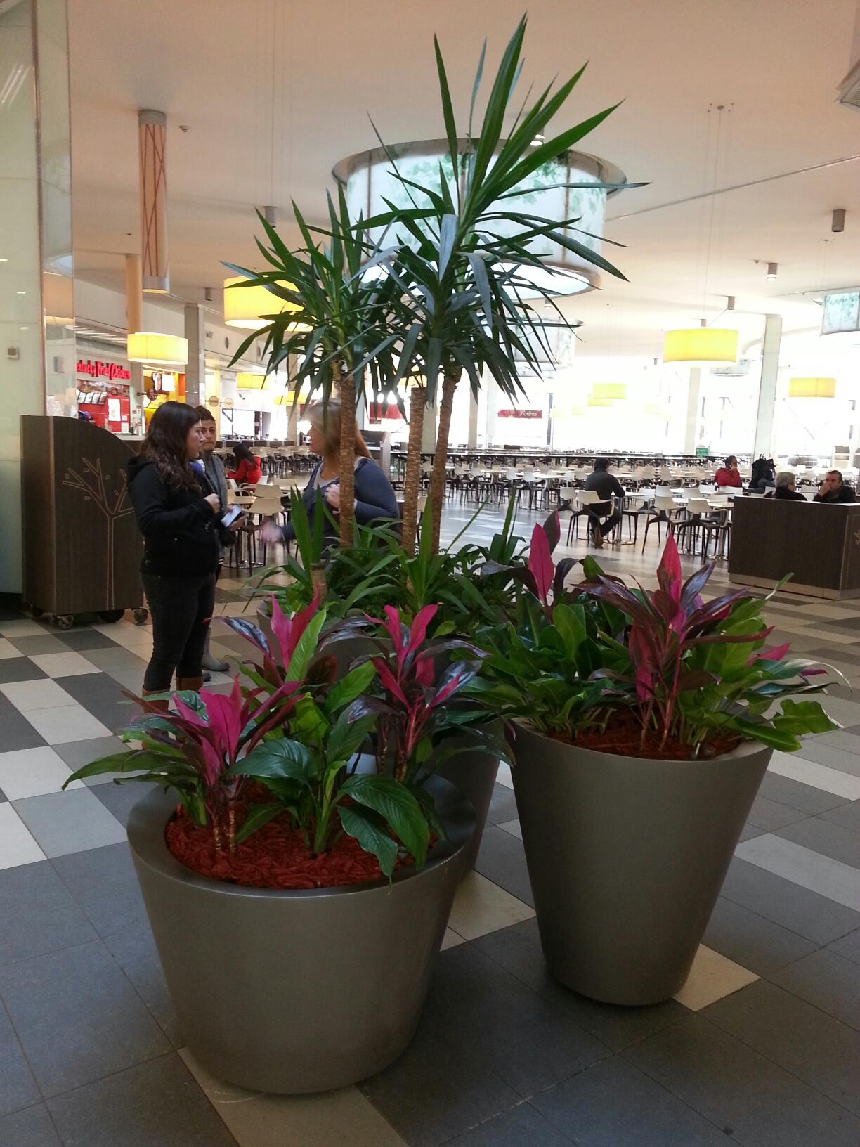 Mall Parque Arauco