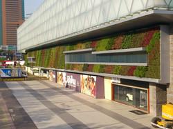 Muro Verde Distrito de Lujo