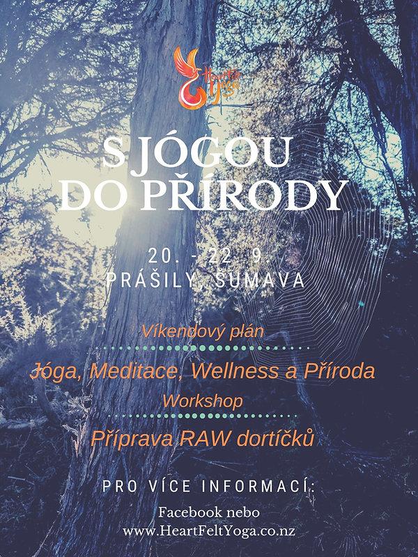 poster prasily.jpg