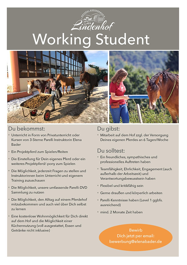 Working Student Flyer.jpg