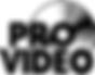 provideo logo-google.png