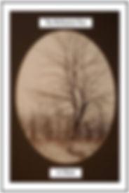 reflectiontreecover8.jpg