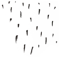 shapes_as_rain.png
