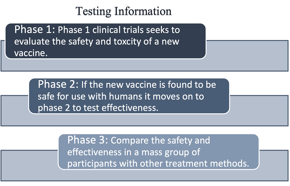 An infographic titled 'Testing Information,' detailing the 3 stages of vaccine development