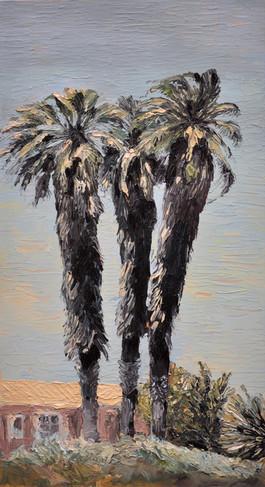 """ Drie Palms [ Three Palms]"""