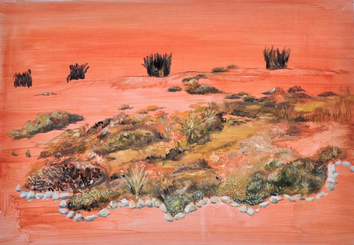 """Woestyn Tuin [ Desert Garden] II"""