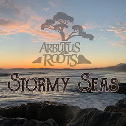 Arbutus Roots Stormy Seas Promo Pic.jpg