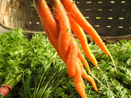 Fresh Carrots with Lemon and Dill
