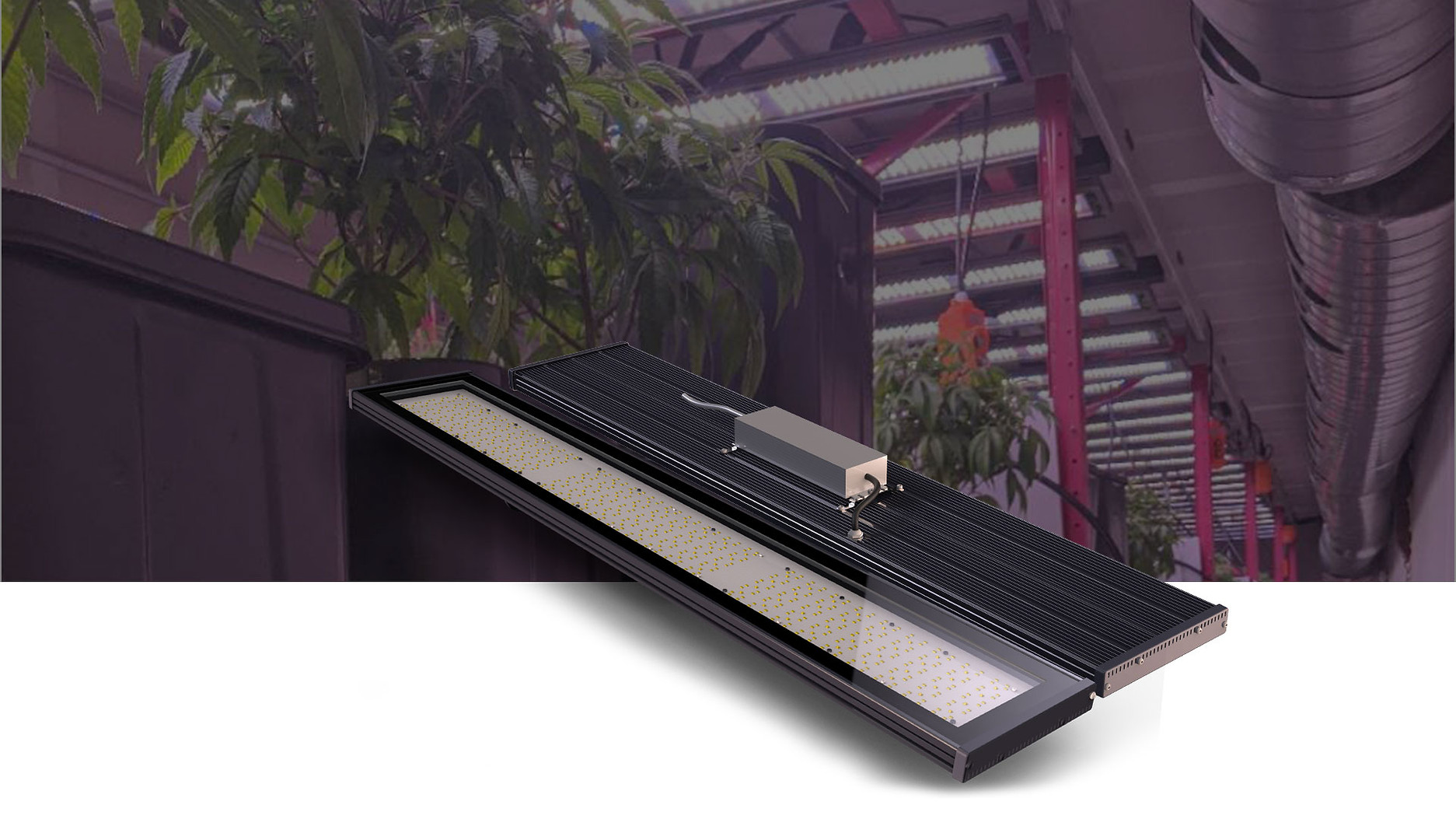 one-stop solution for horticultural lighting